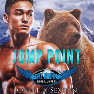 Jump Point audiobook cover art